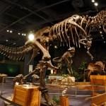 Dinosaur at Orlando Science