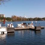 Swan Paddle Boats